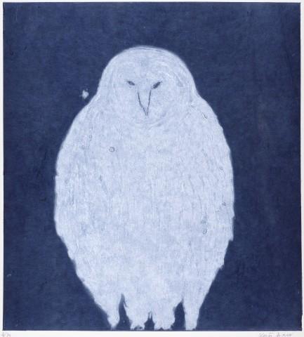 Kate Boxer, Owl - Night (Mounted)