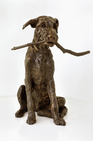 Rosemary Cook, Fingal (Wofhound Pup)