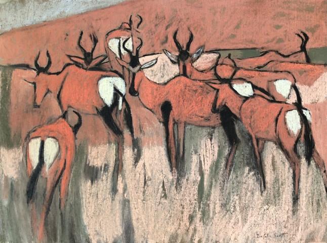 Red Hartebeest in the Kalahari (London Gallery)