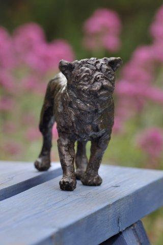 Rosemary Cook, Chelsea Morning - Pug