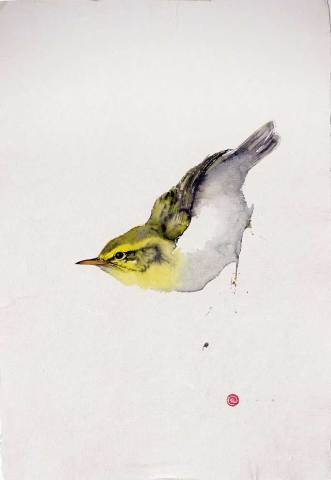 Karl Martens, Wood Warbler (Hungerford Gallery)