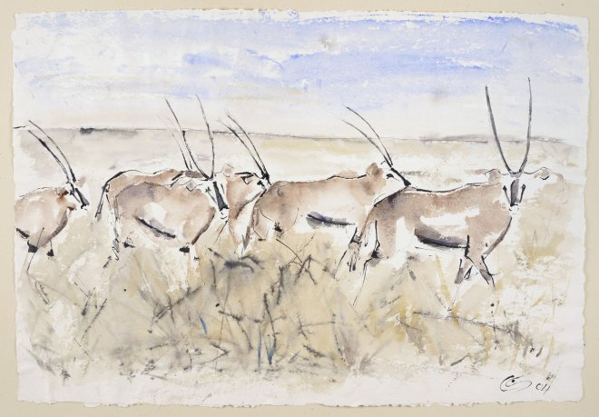 Christine Seifert, Oryx (Unframed) (Hungerford Gallery)