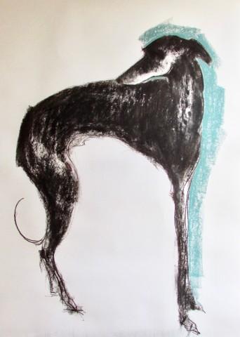 Sally Muir, Boo (Hungerford Gallery)