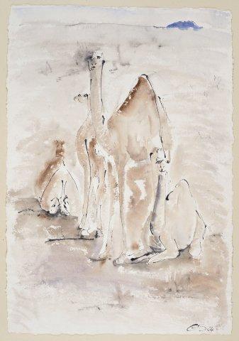 Christine Seifert, Camels (Unframed) (Hungerford Gallery)