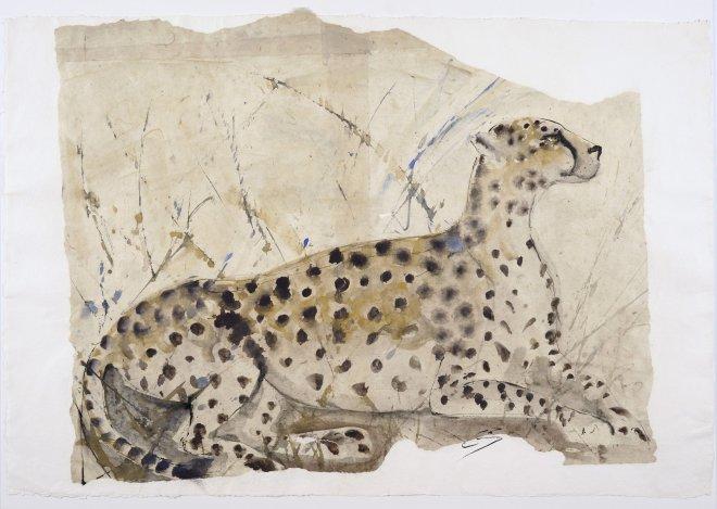 Christine Seifert, Cheetah (Unframed) (Hungerford Gallery)