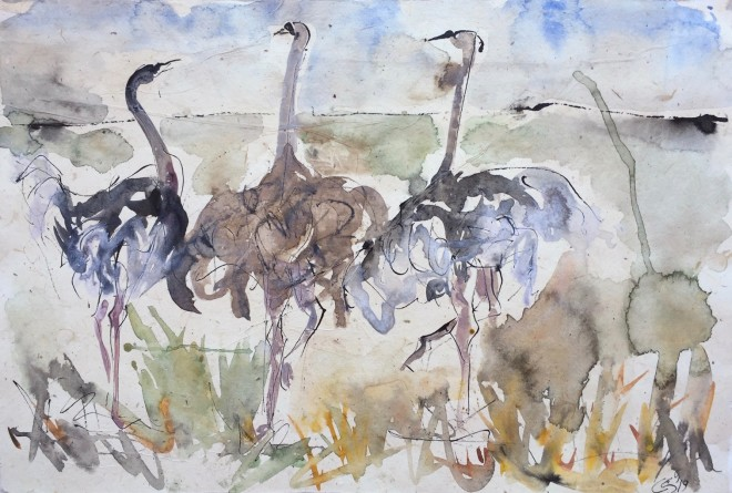 Christine Seifert, Ostriches (Hungerford Gallery)