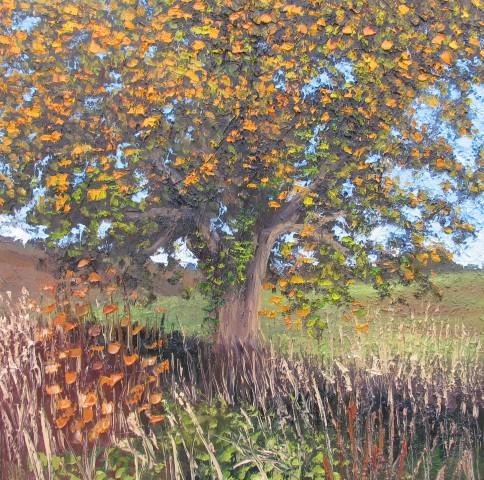 Colin Halliday, Autumn Tree, 2016