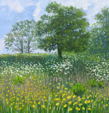 Colin Halliday, Summer Meadow, 2015