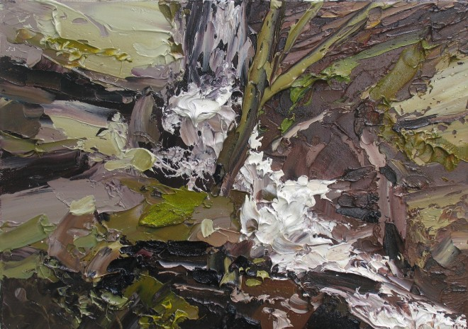 Colin Halliday, Waterfall Study, 2013-14