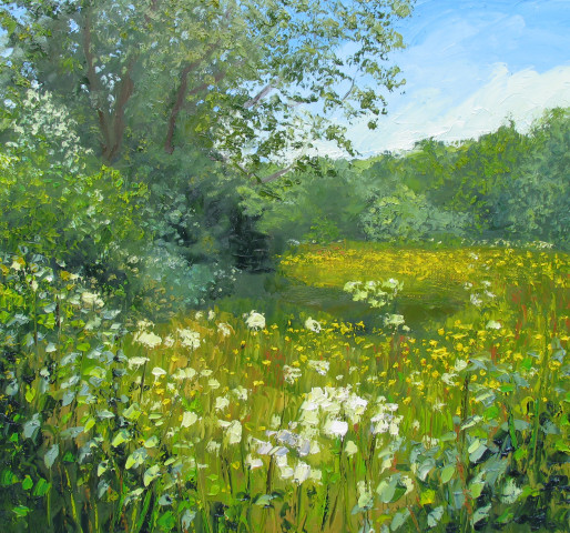 Colin Halliday, Buttercups and Cow Parsley , 2016