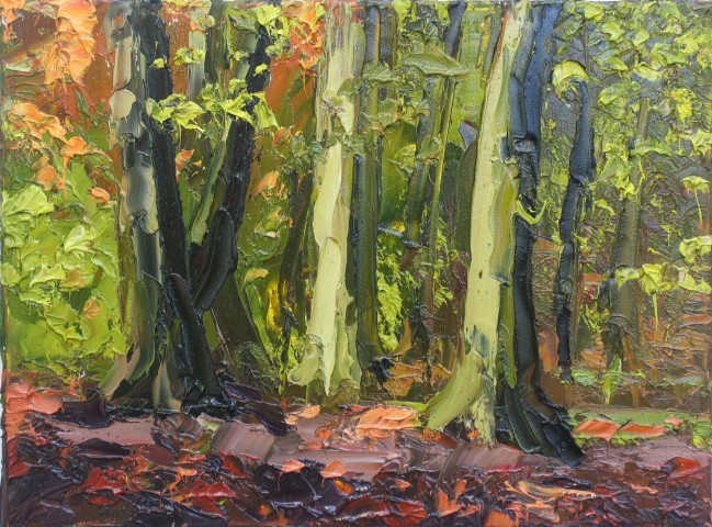 Colin Halliday, Fall, 2013-14