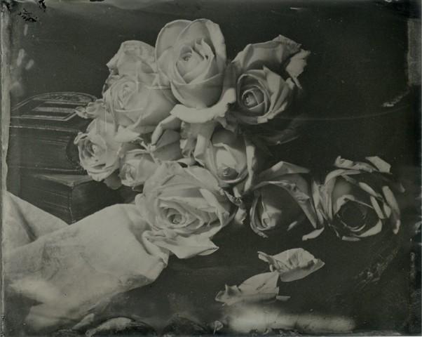 Nicolas Laborie, Proses - The Rose Garden of Secrets, 2015