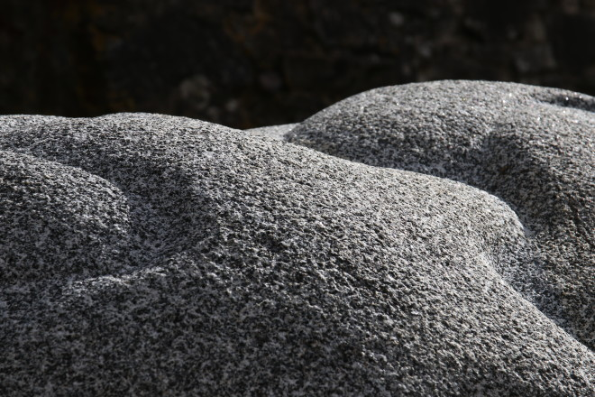 Peter Randall-Page, Where it Touches, 2018