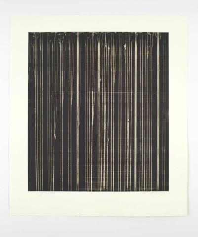 Callum Innes, R III, 2008