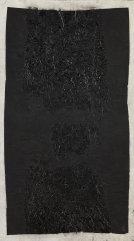 Yang Jiechang 杨诘苍, Earth Gall 地胆, 1992