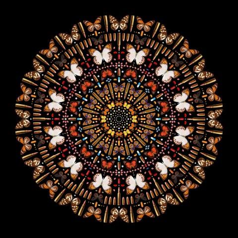 Iain Cadby, Complex Black Mandala *SOLD*, 2019
