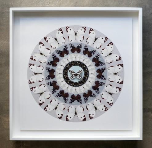 Iain Cadby, Target Mandala (Grey and Lavender), 2020