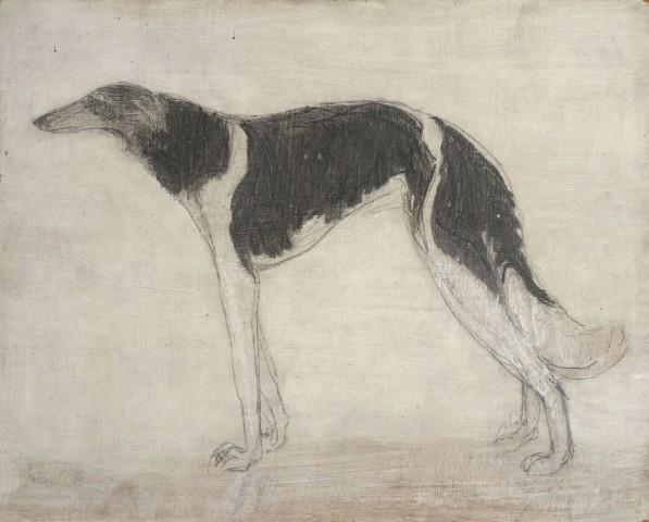 Portrait of Dog Dankoff