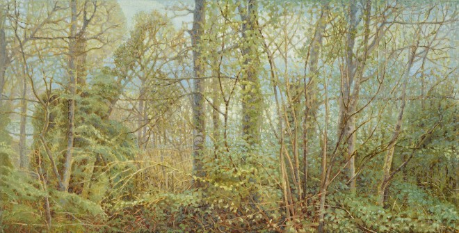 Jane Wormell, Spring Woodland
