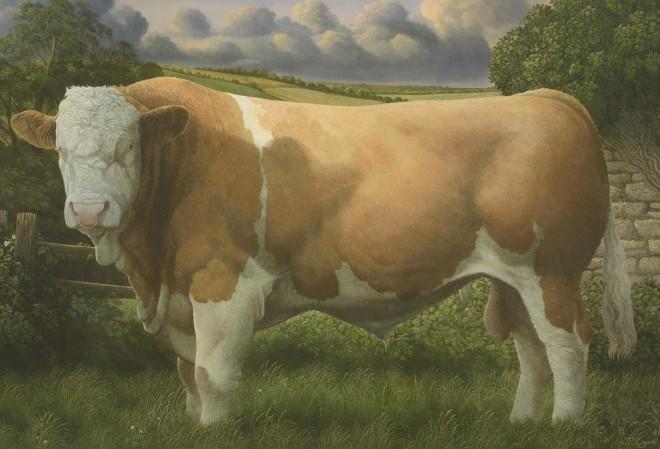 James Lynch, Hereford Bull