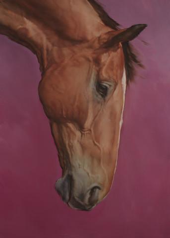 Michael J Austin, Equus IV