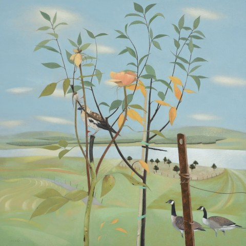 Tom Mabon, From a Garden Above the Firth