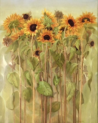 Jane Wormell, Amongst the sunflowers