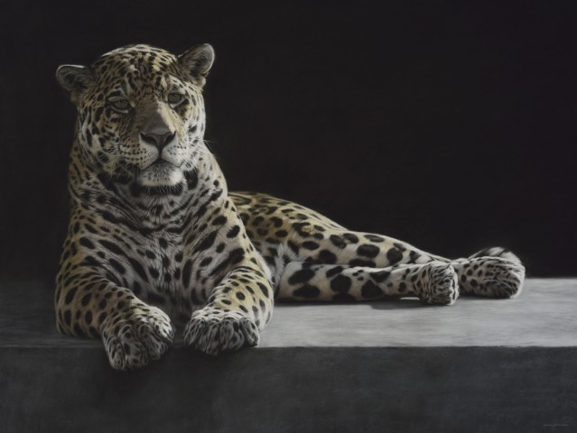 Recumbent Jaguar
