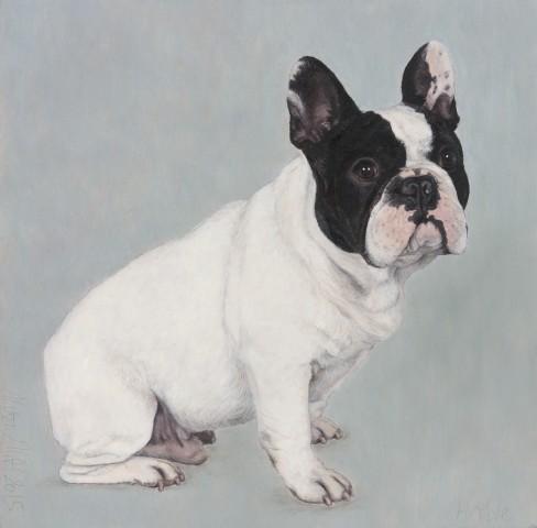Alison Elliott, Herbie (French Bulldog)