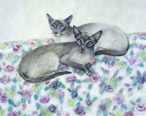 Tracy Rees, Siamese