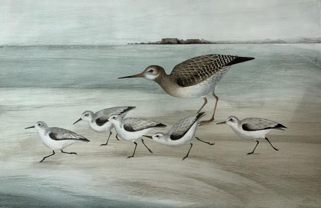 Harriet Bane, Sanderling and Redshank