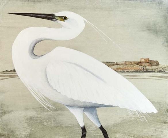 Harriet Bane, Little Egret
