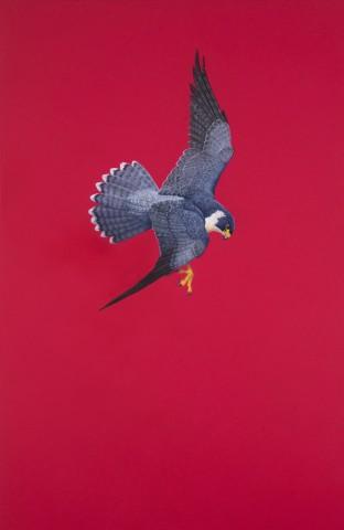 Tim Hayward, Poised - Red