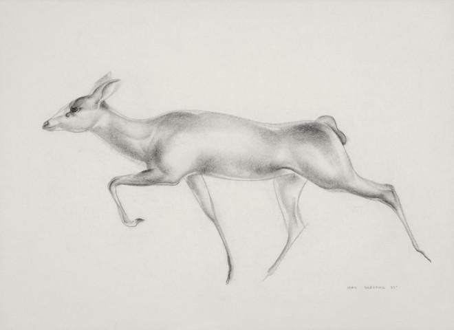 John Skeaping RA, Antelope study