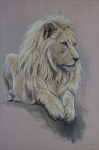 Gary Stinton, Study of Recumbent White Lion