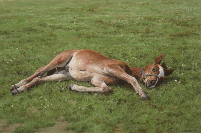 Jay Kirkman, A Foal Resting