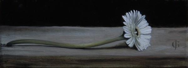 James Gillick, Gerbera