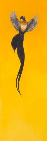 Soar – Yellow
