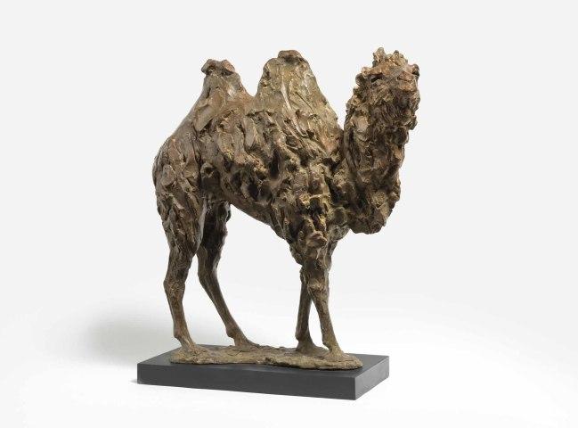 Tanya Brett, Camel