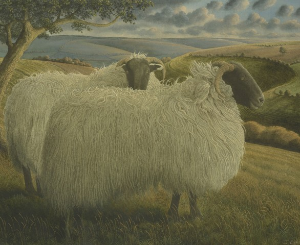 James Lynch, Blackface Sheep