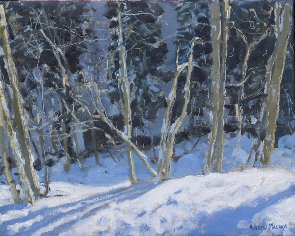 Andrew Macara, The Forest, La Clusaz, France