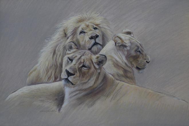 Gary Stinton, Study of White Lion Pride