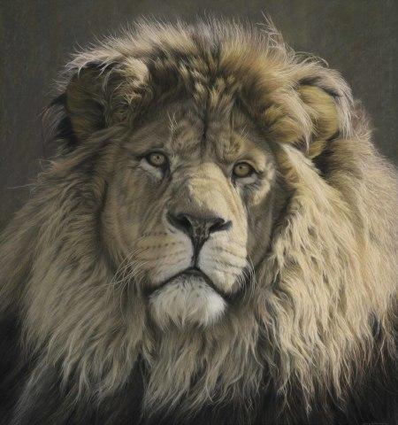 Gary Stinton, Panthera leo