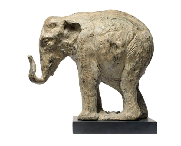 Tanya Brett, Indian Elephant