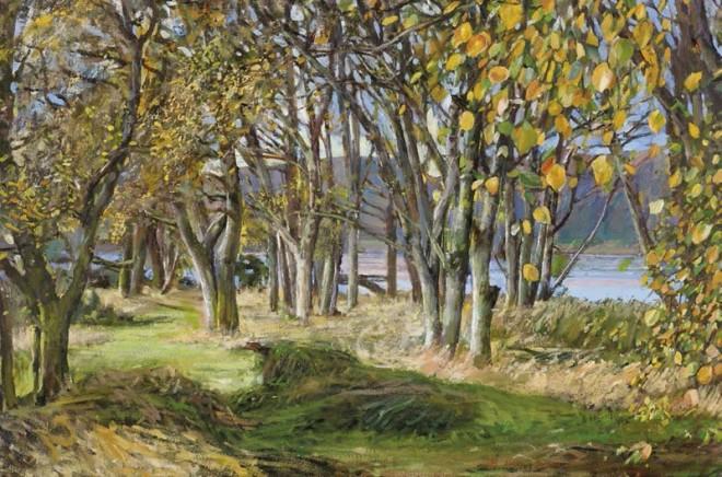 Ben Henriques, Aspen Trees in Autumn
