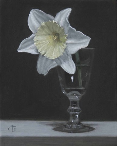 James Gillick, Daffodil in a Sherry Glass