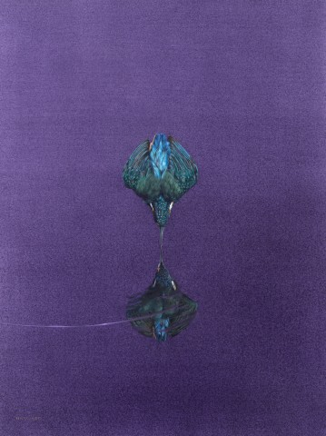 Tim Hayward, Reflection - Purple