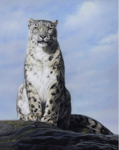 Gary Stinton, Eye to Eye III - Snow Leopard