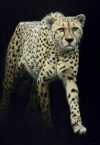 Cheetah - Large as Life IX