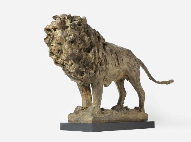 Tanya Brett, Lion